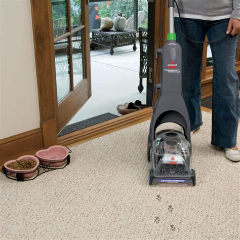 rug cleaning state college pa state college carpet cleaning thecarpets co