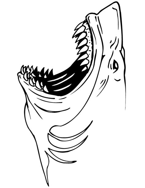 Jaws shark coloring page h amp m coloring pages
