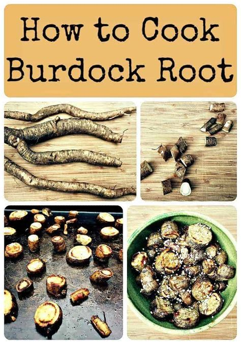 ediblr raw roots how to cook burdock root