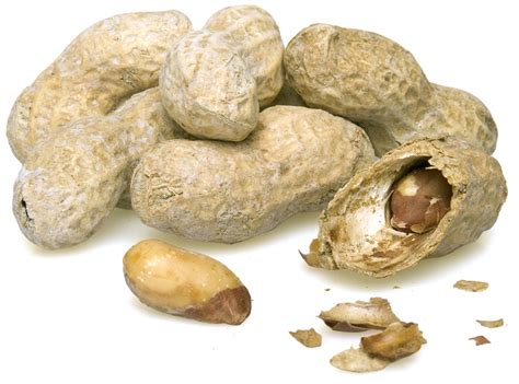 roasted peanuts salted in shell by the pound nuts com