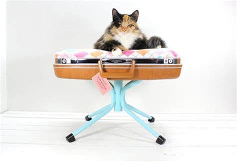 cat macaron bed top 10 best cat beds that will make you go i must have