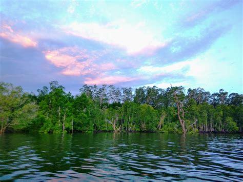 konservasi rakyat bukti masyarakat kelola sumberdaya alam