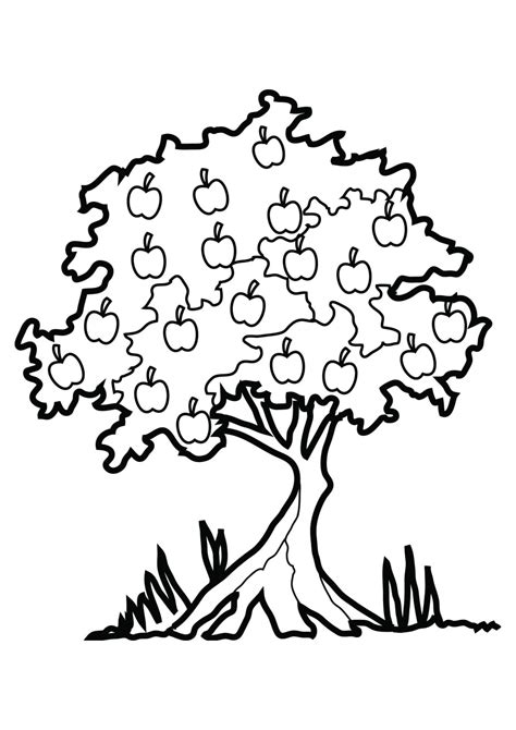 coloring pages with trees family tree black and white clipart panda free clipart