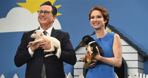 stephen colbert puppies ellie kemper stephen colbert help find adorable rescue dogs a home on late show