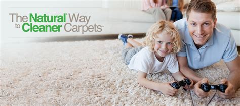 professional upholstery cleaning chem dry s professional carpet cleaning service drier