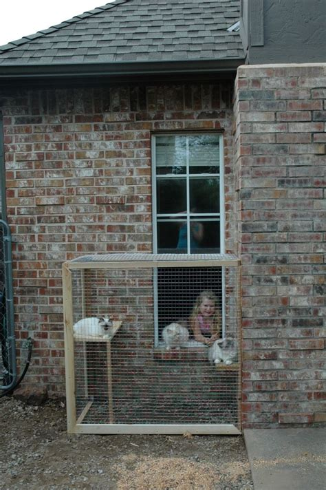 pin by stacey prince on outdoor cat enclosures
