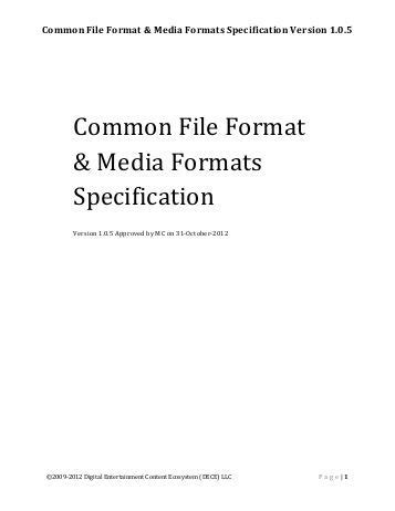 video file format specification avcvideopacket an avcvide
