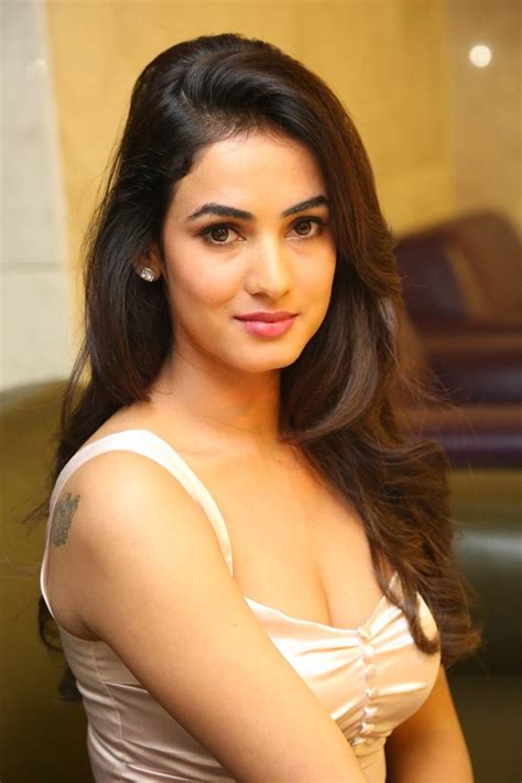 sonal chauhan sister photos beautiful sonal chauhan hot sexy look photos download