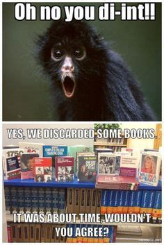 librarian meme library memes on library humor librarians and