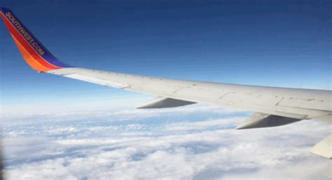 Plane Wings the physics of why airplane wings oscillate in turbulence