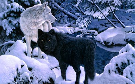 black and white anime wolves 3 background wallpaper white wolf and black wolf wallpaper
