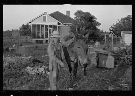 Lousiana Black Cardi 15 amazing photographs of farm from the 1930 s