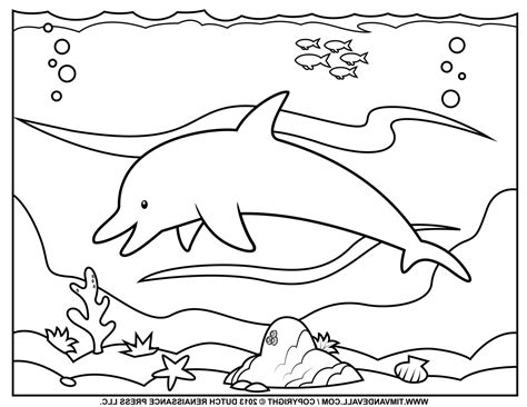 large dolphin coloring page dolphin and whale coloring pages pages whale shark
