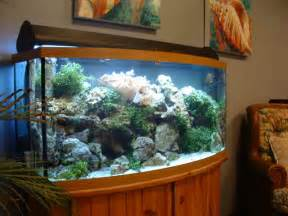 Home Aquarium Decorations Beautiful Aquarium Decorations Ideas With Cabinet Design