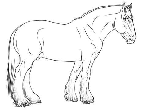 coloring pages of draft horses clydesdale stallion by applehunter on deviantart draft