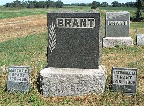 Berrien County Michigan Birth Records Berrien County Genealogy Project Presents Brant Cemetery
