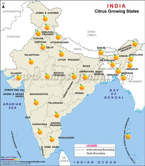 Map of Citrus Fruits Producing States in India, Citrus Fruits Producing States