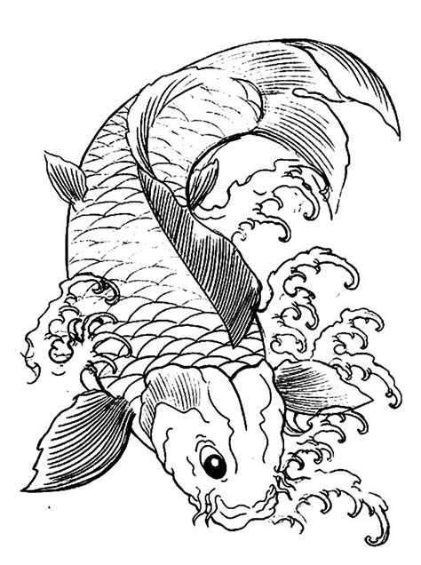 koi fish coloring pages japanese koi coloring pages and print for free