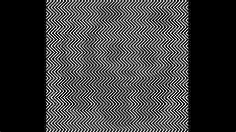 ilusiones ópticas blanco y negro la ilusi 243 n 243 ptica del panda que est 225 revolucionando las