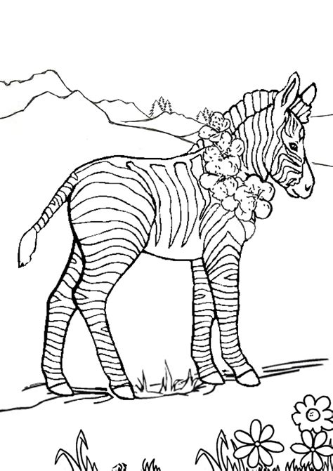 Meadow Coloring Pages Horse In The Meadow In Horses Meadow Coloring Page
