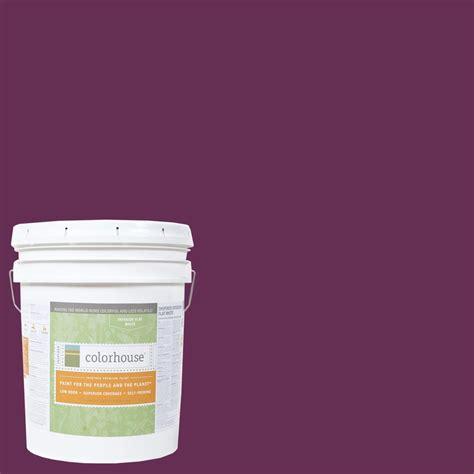 home depot yolo colorhouse paint colorhouse 5 gal petal 07 flat interior paint 561574