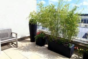 bamboo balcony privacy screen ideas with plants carpets and bars interior design ideas