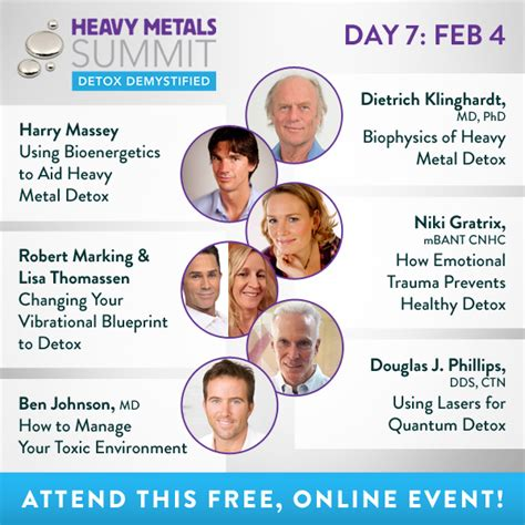 Detoxing Heavy Metals And Lyme by Heavy Metals Summit Detox Demystified Jan 29 Feb 5