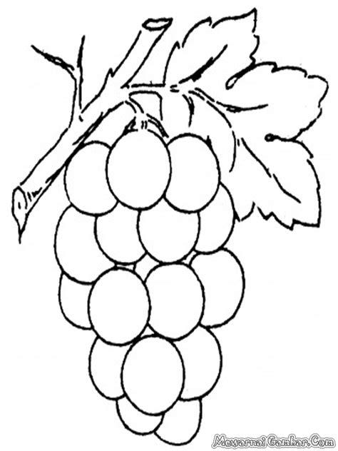 mewarnai gambar buah anggur mewarnai gambar