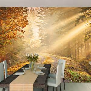 large wall murals wallpaper forest path large wallpaper mural achica