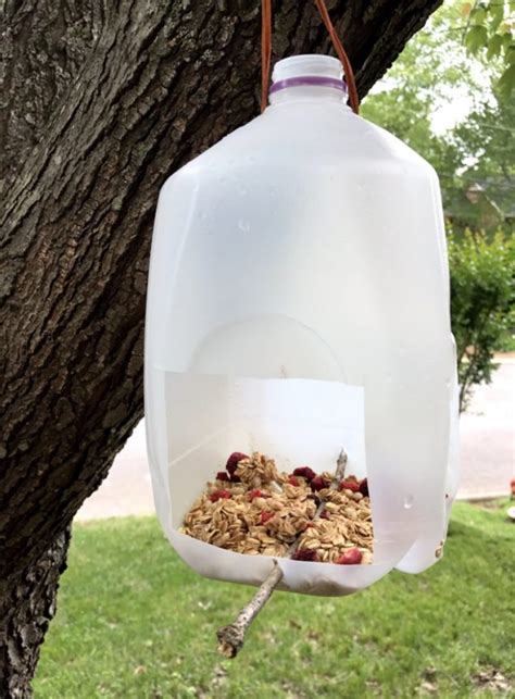 how to make a milk jug bird feeder family focus blog