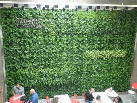 ideas for vertical gardens vertical garden ideas