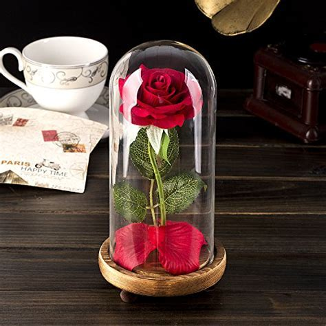 """Beauty and the Beast"" Rose Kit, Red Silk Rose and Led"