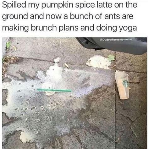 Pumpkin Spice Latte Meme - 22 funny pumpkin spice memes smosh