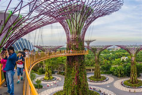 Singapore Gardens By The Bay - explore marina bay area singapore best places to visit