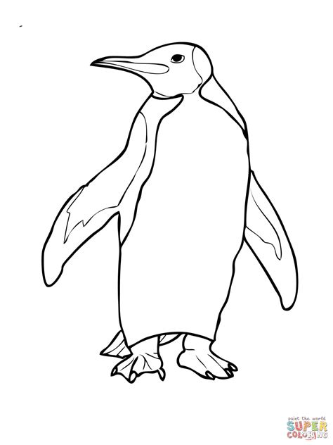 king penguin coloring page free printable coloring pages