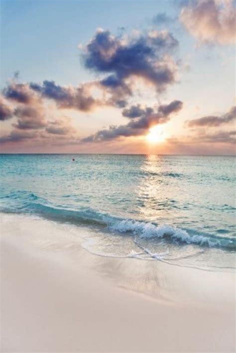 spirit  newport beach contest results advocate