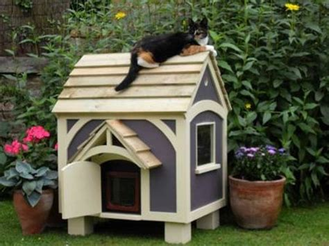 Outdoor Cat House Plans by Outdoor Cat House Design If We Put This On