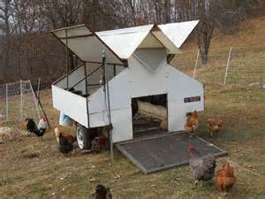 Portable Chicken Coop » New Home Design