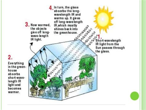 the green house the greenhouse effect
