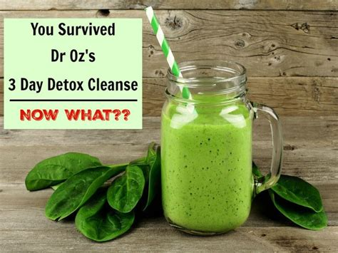 You Dr Detox by Dr Oz 3 Day Detox Cleanse Day 2 3 Dr Oz Posts And Tips