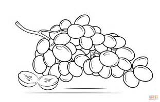 grapes coloring page grapes coloring page free printable coloring pages