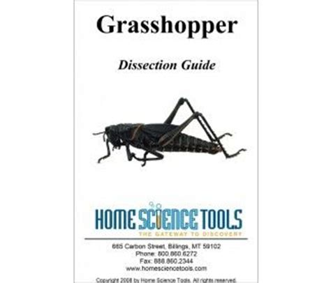 Grasshopper Dissection Worksheet Answers by Grasshopper Dissection Guide Science Olympiad