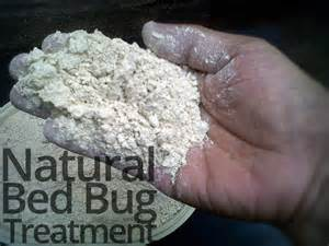 bed bug treatment for lasting bed bug relief memes