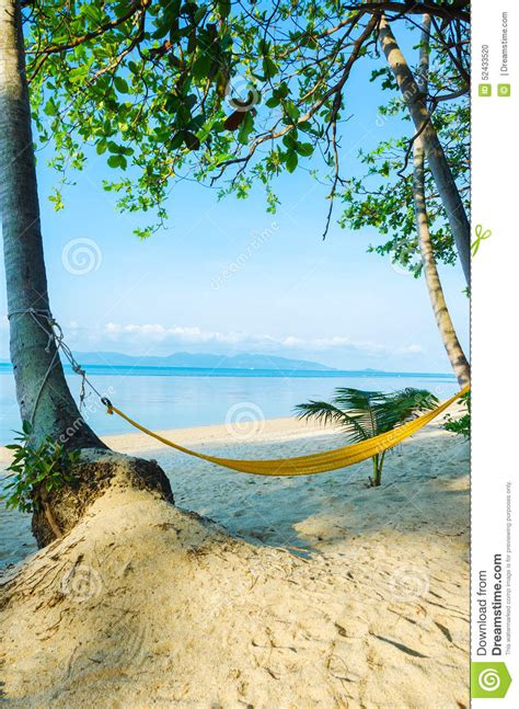 At T White Pages Lookup Hammock At The Aol Image Search Results