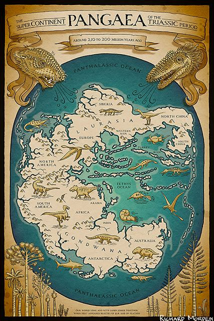 The Of Pangaea Book 1 richard morden illustration map of the supercontinent pangaea