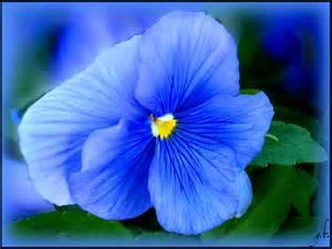 le monde de la terre bleu bleue archives le monde