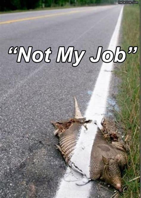 Not My Job Meme - not my job