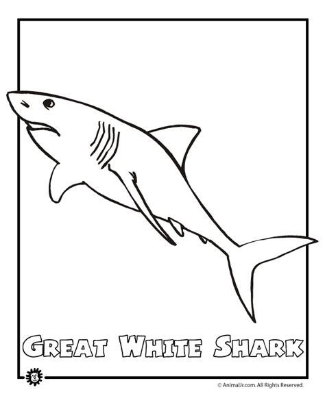coloring pages endangered animals animals coloring pages for coloring home