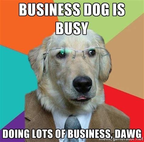 dog memes thatll   day rover blog