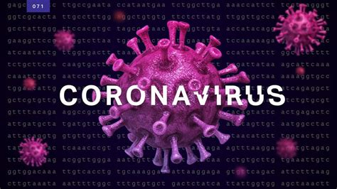 covid  breaking news covid coronavirus news  advice